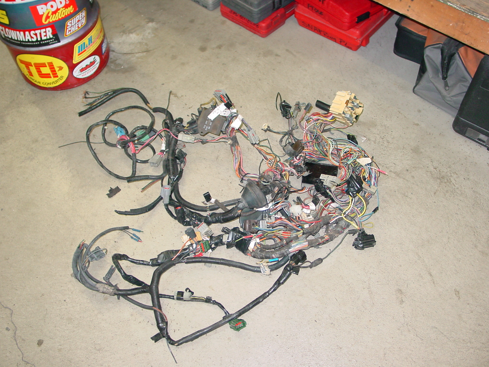 cobra harness before